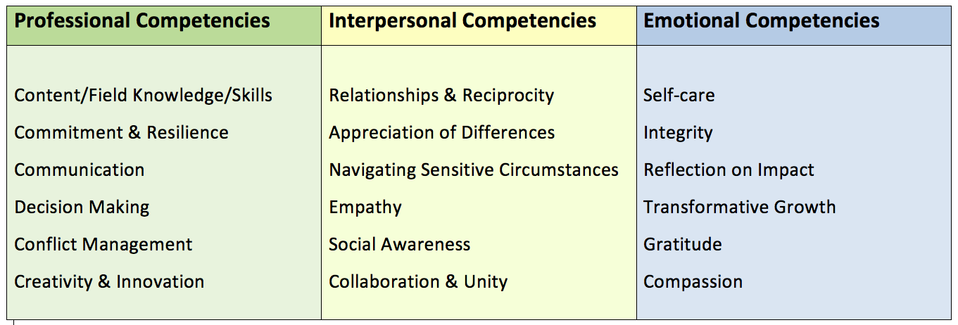 hil-competencies-screen-shot