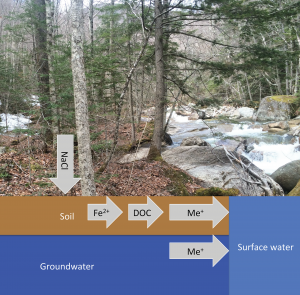 "From ""Trace metals in Northern New England streams: Evaluating the role of road salt across broad spatial scales with synoptic snapshots"" by J.F. Wilhelm D.J. Bain, M.B.Green, K.F.Bush, & W.H. McDowell"