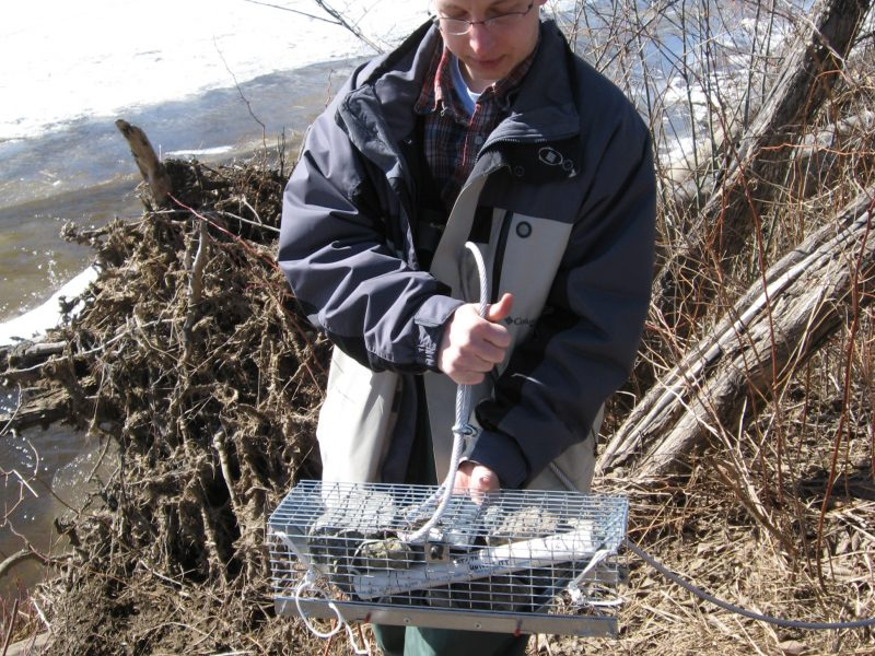 Electronic Water Sensor