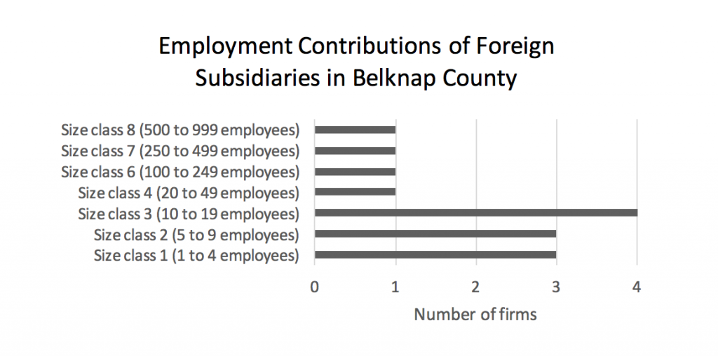 employment-contributions-of-foreign-subsidiaries-in-belknap-county